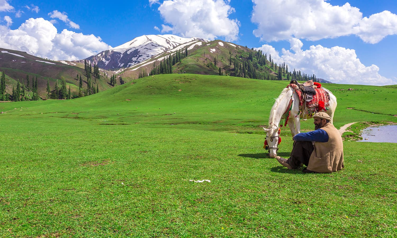 Payee Meadows and Makra Peak. Photo by Syed Bilal Javaid