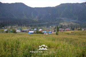 Top View Arang Kel PTP