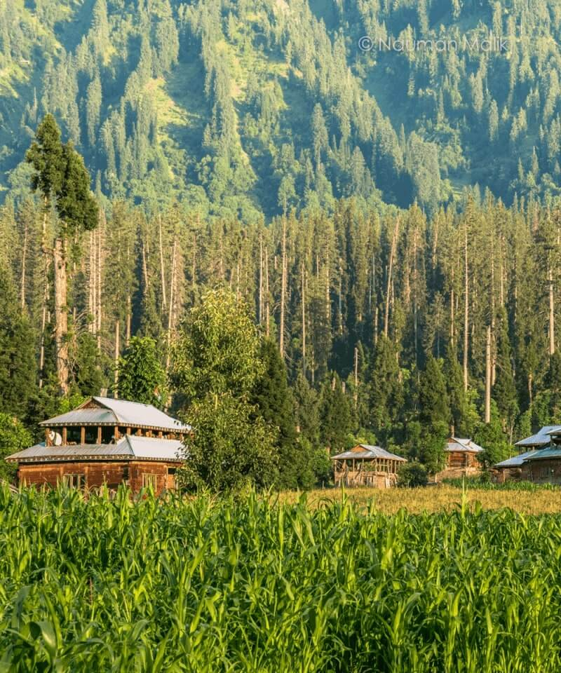 Neelum-valley-L